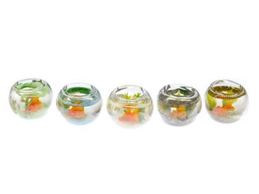 Goldfish In A Bowl Fishbowl Earrings Miniblings Fish Aquarium Animal Pet Koi – Bild 1