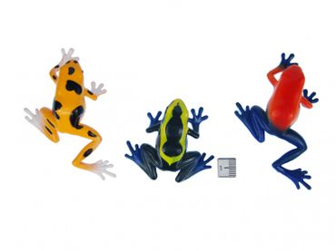 Set Of 6 Frog Animal Figure Figures Figurines Miniblings Rubber Amphibians – Bild 3