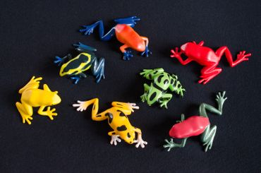 Set Of 6 Frog Animal Figure Figures Figurines Miniblings Rubber Amphibians – Bild 4
