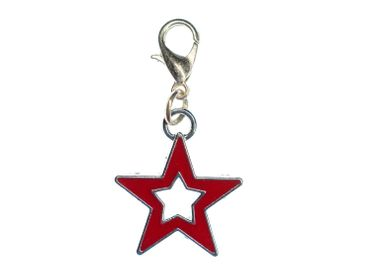 Star Charm For Bracelet  Wristlet Miniblings Asterisk Enamelled Red Silver – Bild 1