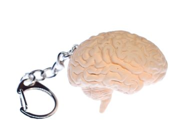 Brain Key Chain Key Ring Miniblings Necklace Key Ring Organ Human Anatomy – Bild 1