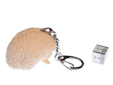 Brain Key Ring Miniblings Key Chain Ring Organ Human Anatomy – Bild 2