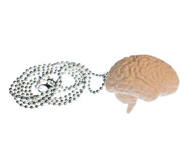 Brain Necklace Miniblings 80cm Anatomy Medicine Organ Iq Brain Zombie XL – Bild 1
