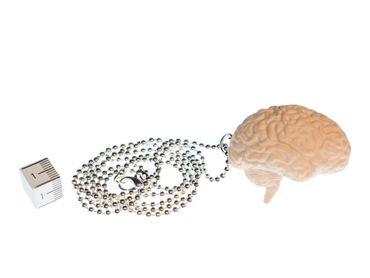 Brain Necklace Miniblings 80cm Anatomy Medicine Organ Iq Brain Zombie XL – Bild 2
