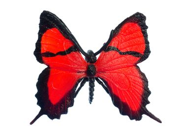 Butterfly Brooch Miniblings Broach Red Spring Sky Flying Butterflies Nature – Bild 1