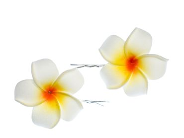 Frangipani Set Of 2 Hair Clips Miniblings Hair Pin Clips Lily Flower Plumeria Surfer Hawai – Bild 1