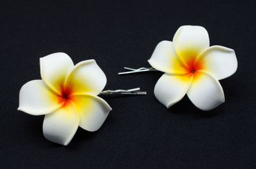 Frangipani Set Of 2 Hair Clips Miniblings Hair Pin Clips Lily Flower Plumeria Surfer Hawai – Bild 3
