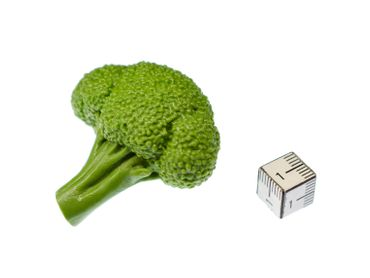 Broccoli Brooch Miniblings Pin Vegetable Healthy Food Eating Rubber 46mm – Bild 2