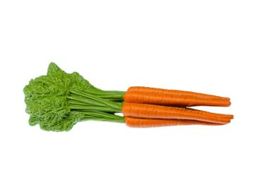 Carrot Carrots Brooch Miniblings Pin Vegetable Healthy Food Eating Rubber 8,5 cm – Bild 1