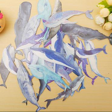 3x Wal Lesezeichen Miniblings Meer Ozean Buch Leseband Lesemarke Tier Leseratte – Bild 4