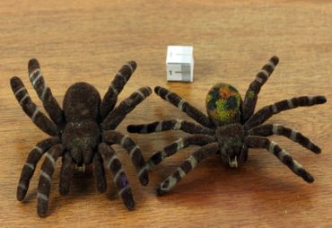 Spider Brooch Halloween Miniblings Tarantula Horror Velvety Fun – Bild 4