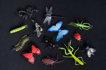12X Insect Figurines Animal Figure Figures Figuriness Miniblings Rubber Toys Spider Fly Toy – Bild 2