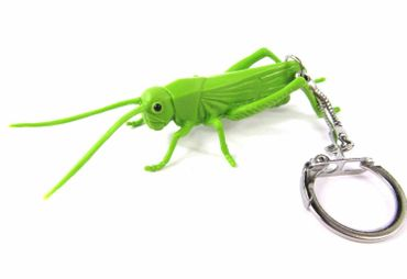 Grasshopper Key Ring Miniblings Pendant Key Ring