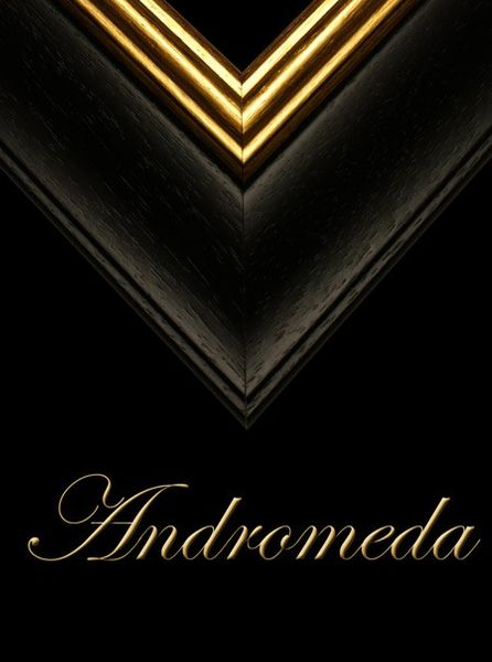 "2 1/2"" BESPOKE BLACK WOOD FRAME ""ANDROMEDA""  – image 1"