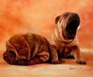 "MODERN ART -  YAWNING SHAR PEI PUPPIES 20x24 ""  ORIGINAL OIL PAINTING – image 2"