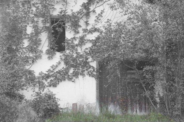 Old Barn Door - Fineart Photography by David Freeman