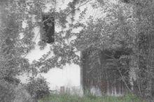 Old Barn Door - Fineart Photography by David Freeman 001