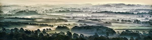 Dawn Mist, Ditchling - Fineart Photography by David Freeman