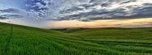 Fields of Green - Fineart Photography by David Freeman 001