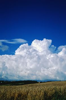 Summer Clouds - Fineart Photography by David Freeman
