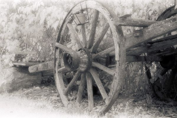 Ye Old Cart - Fineart Photography by David Freeman