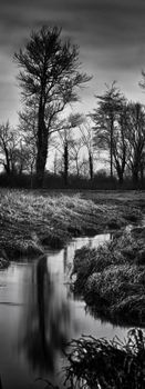 River Uck, Alfriston - Fineart Photography by David Freeman