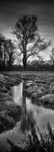 River Uck, Alfriston - Fineart Photography by David Freeman 001