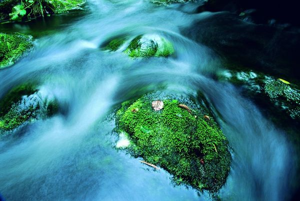 Rushing down the stream - Fineart Photography by David Freeman