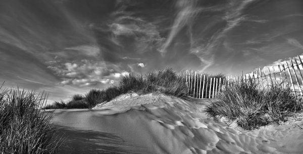 Sand Dunes, Witterings - Fineart Photography by David Freeman