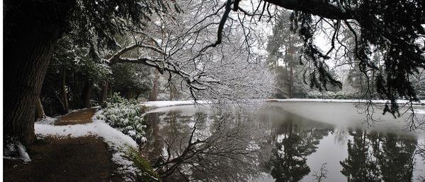 Snowy Lake  - Fineart Photography by David Freeman