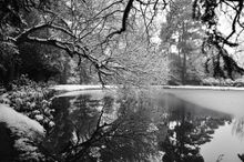 Sussex in The Snow - Fineart Photography by David Freeman 001
