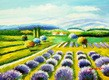 "LAVENDER FIELD IN THE TUSCANY  12X16 "" OIL PAINTING"