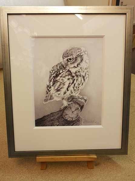Little Owl- Limited Edition Print by Clive Meredith – image 2