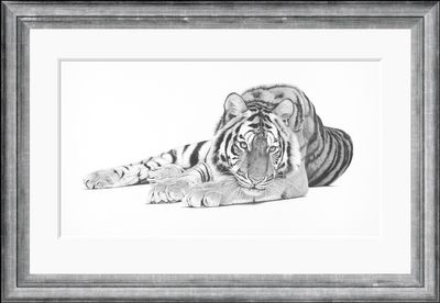 Bengal  - Limited Edition Print by Clive Meredith – image 2