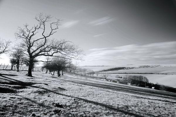 SouthDownsB&WLand604 - Fineart Photography by David Freeman