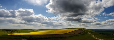 RapeFieldLand977 - Fineart Photography by David Freeman