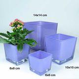 Vierkantgefäß Glas Eckarf eckig Pflanzgefäß Pflanztopf 14cm lila violett