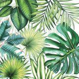 20 Servietten Blätter Tropen Tropical Leaves 3-lagig 33x33cm Tissue Amazonas Dschungel