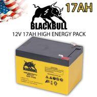 Blackbull 12V 17AH Akku Zyklenfest EXTRA RANGE Faston -PRO-