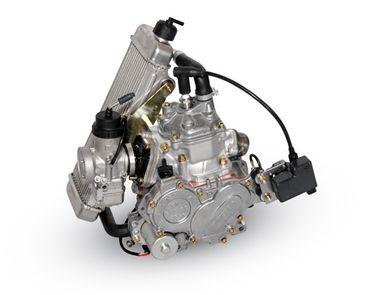Engine Rotax FR 125 MiniMAX Evo
