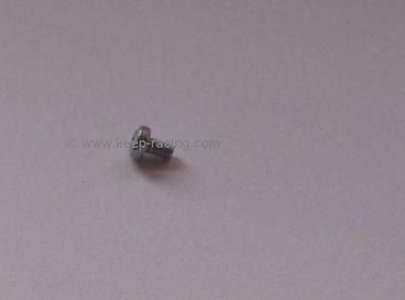Schlitzschraube für Drosselklappe M 2 x 3 mm