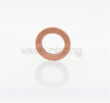 sealring 6x10x1 (oillevel - and oil-drain-screw)