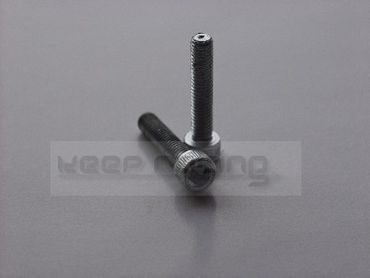screw M6x30 (2 pcs)