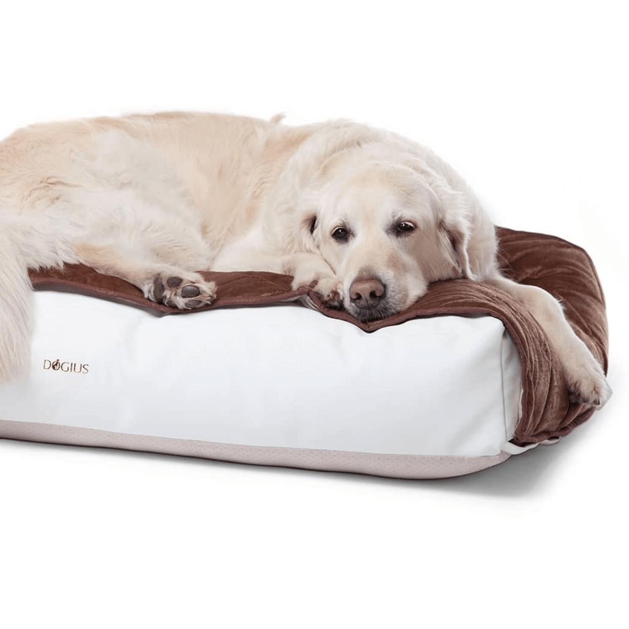 Dogius Hundebett Schlafsystem Onlineshop