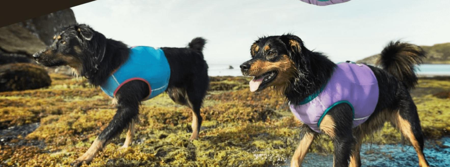 Hundekühlweste Hunde Kühlmatten