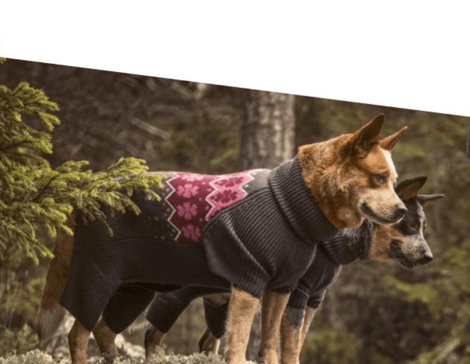 Hundepullover Hunde Pullover
