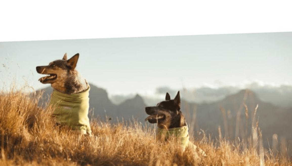 Hundemantel Hundewintermantel Hunderegenmantel