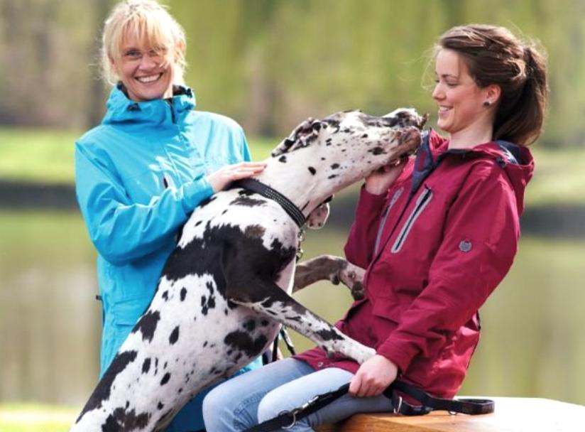 Owney Outdoor Jacken und Hosen für Hundetrainer und Hundehalter