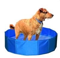Hundepool -Aufbau ohne Luftpumpe Hundeschwimmpool