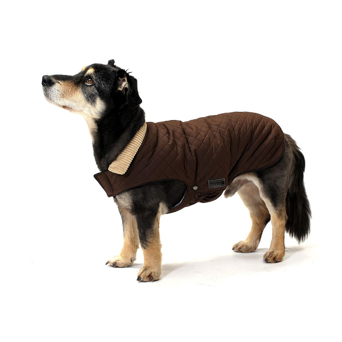 Windsor Hundejacke Steppjacke Wolters Wolters Braun zqUMpSGV